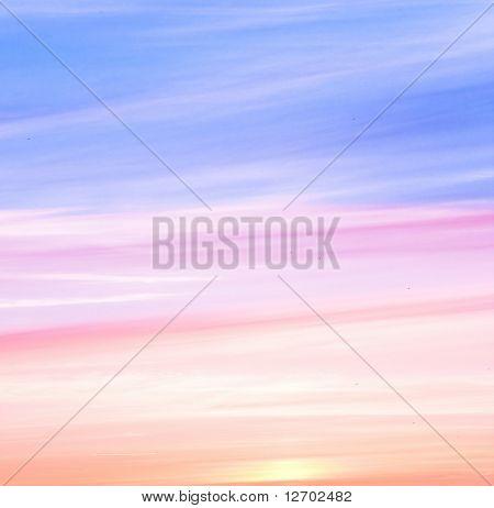 Pink Tender Dawn