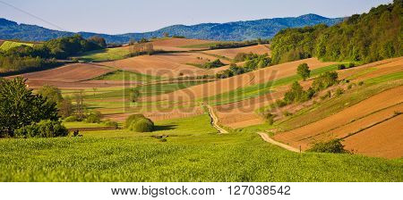 Idyllic agricultural landscape panoramic view northern Croatia