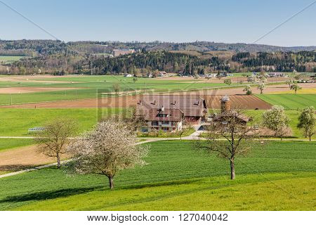 Fields Near Fislisbach, Switzerland