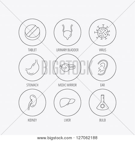 Virus, tablet and stomach organ icons. Liver, kidney and urinary bladder linear signs. Medic mirror, ear and lab bulb flat line icons. Linear colored in circle edge icons.