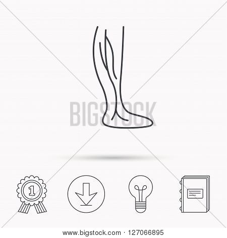 Phlebology icon. Leg veins sign. Varicose or thrombosis symbol. Download arrow, lamp, learn book and award medal icons.