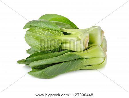 fresh baby Bok choy (Chinese cabbage) on white background