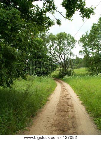 Road In Latgalia (Latvia)