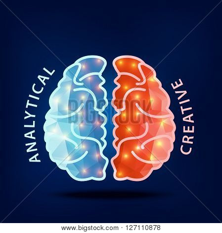 Creative brain Idea.Left and right hemisphere of human brain