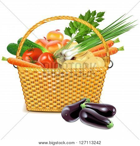 Vector Wicker Basket with Vegetables isolated on white background