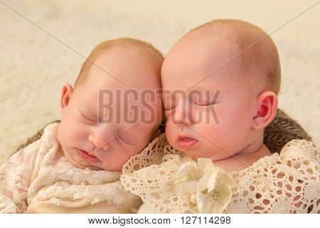 Three weeks old newborn identical twin babies dressed in lace