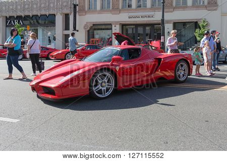 Ferrari Enzo On Display