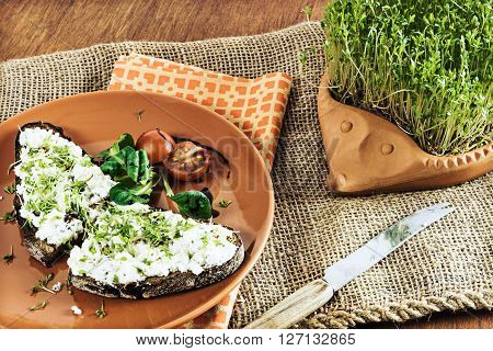 terracotta-hedgehog with home-grown garden cress and plate with brown bread and cream cheese garnished with cress lettuce and tomato on old jute sack vintage