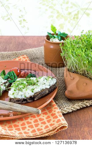 terracotta-hedgehog with home-grown garden cress and plate with brown bread and cream cheese garnished with cress lettuce and tomato on old jute sack upwise