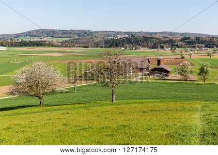 View to the village of Fislisbach and the fields arround in springtime