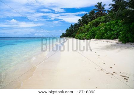 Immaculate white Sand, Palms and Beach