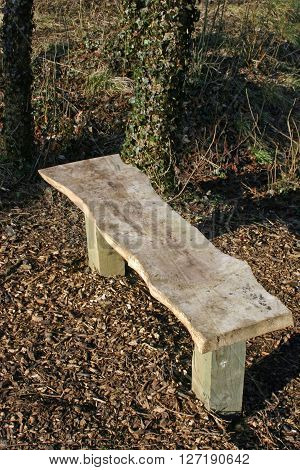 Wooden seat made from a rough cut plank of timber which could be elm (Ulmus) on two wooden posts in woodland. Background of trees dead leaves and woodchips.
