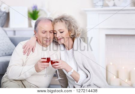 Happy mature couple drinking wine together at home