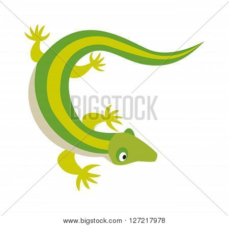 Green water dragon lizard nature animal reptile cartoon silhouette vector lizard illustration. Wild dragon lizard and lizard art zoo cartoon salamander. Silhouette dragon lizard reptile chameleon.