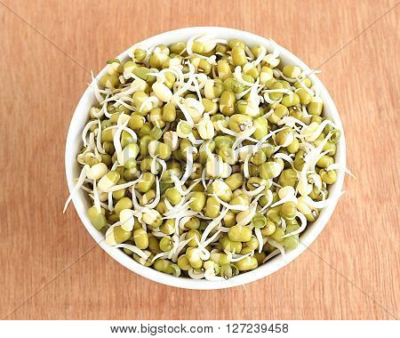 Healthy food sprouted mung in a bowl.