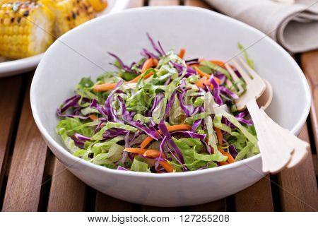 Cole slaw salad with romaine, red cabbage and carrot for an outdoor picnic