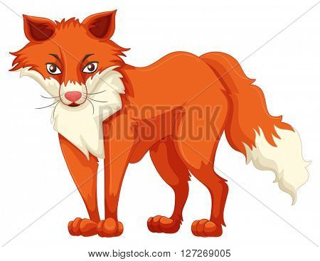 Fox with red fur illustration