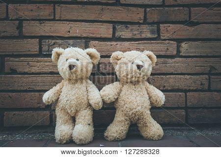 Teddy bears on an adventure in Chiang Mai