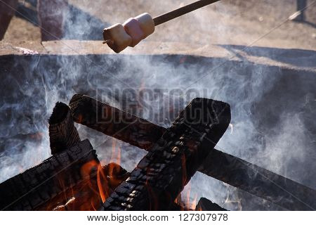 Cooking Marshmellows on a stick over the campfire