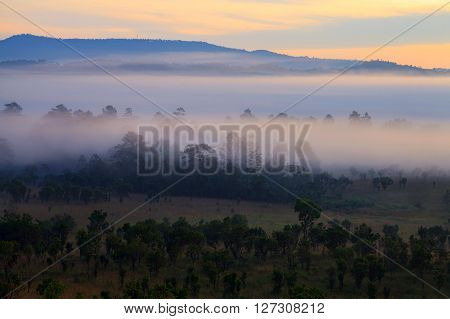 Misty Morning Sunrise In Mountain At Thung Salang Luang National Park Phetchabun,thailand..