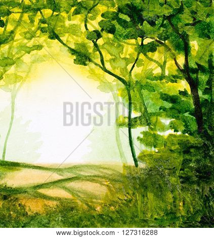 watercolor abstract background with forest trees in sunlight and green folliage