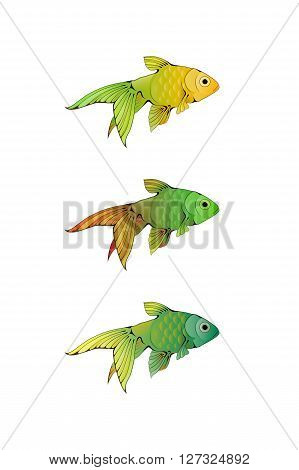 Hand-drawn ink-stylized little colorful aquarium fishes isolated on white