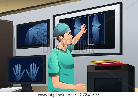 A vector illustration of doctor looking at x-ray on lightbox