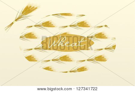 Sheaves of wheat with the inscription painted with watercolors