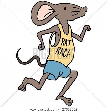 An image of a rat race runner.