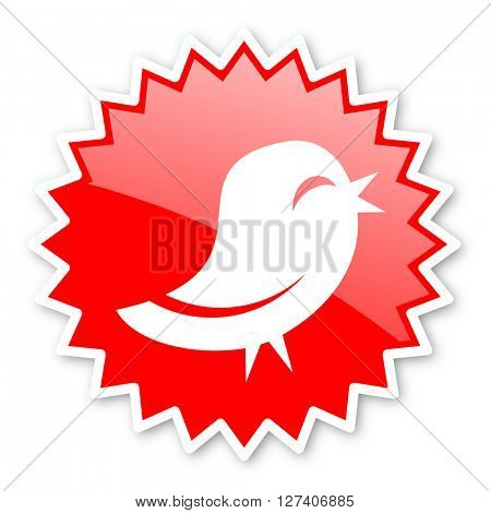 twitter red tag, sticker, label, star, stamp, banner, advertising, badge, emblem, web icon