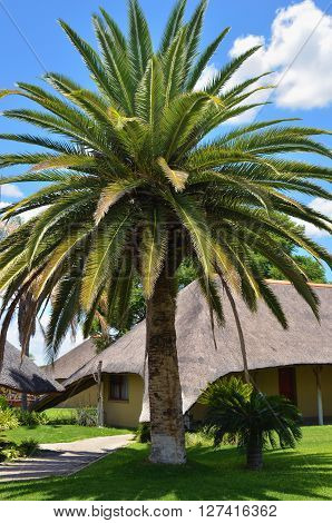 WATERBERG NAMIBIA - FEB 04 2016: Accommodation units in Frans Indongo Lodge one from the most famous and popular place in Waterberg region to stay and relax during safari