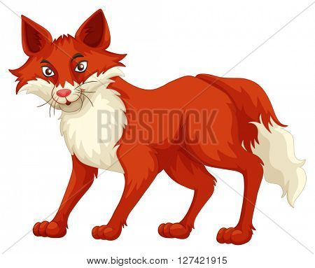 Fox with red fur standing illustration