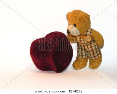 Small Teddy Bear With A Ringbox2
