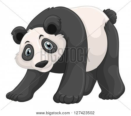 Panda with happy face illustration