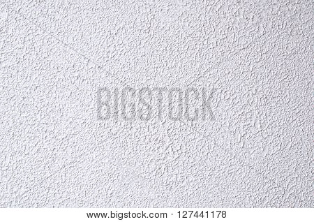 The White rugged painted on outside wall.