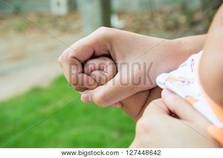 Baby's Fingers, Hand