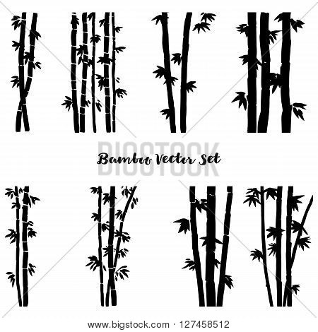vector set of monochrome  bamboo, isolated bamboo stalks, bamboo forest, hand drawn vector illustration