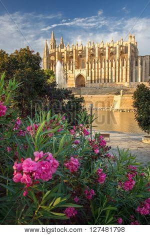 The Cathedral of Santa Maria of Palma de Mallorca La Seu Spain