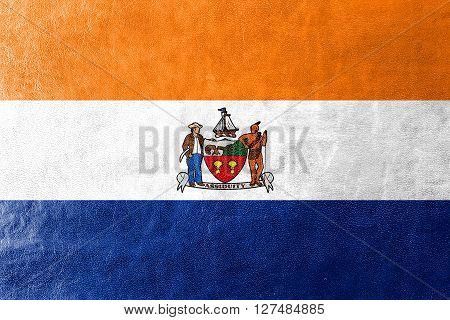 Flag Of Albany, New York, Painted On Leather Texture