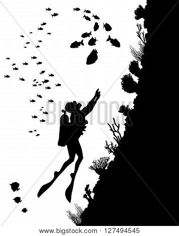 Diving Silhouettes And Underwater Life