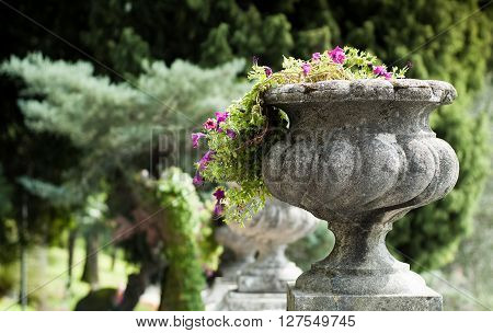 closeup of a stone flower vase photographed in Italy