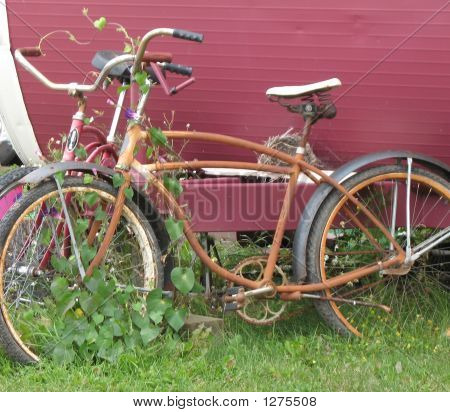 Bicycles For Two
