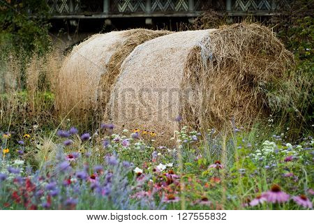 photo of a haystack surrounded by country flowers