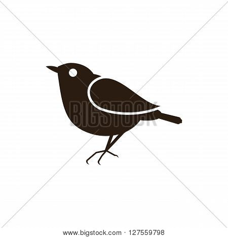Vector illustration silhouettes of bird on the white background