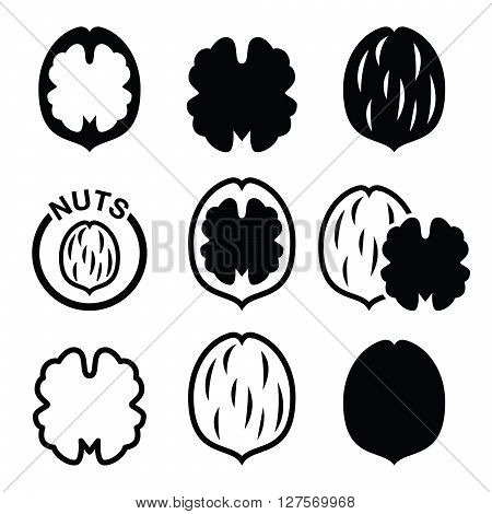 Walnut, nutshell - food vector icons set