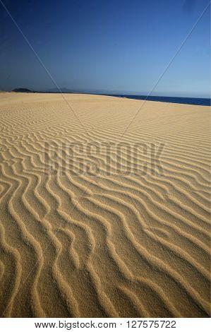 Europe Canary Islands Fuerteventura