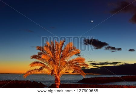 Sunset on beach with moonrise in Madeira insel Portugal
