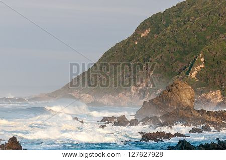 An early morning scene of the coast along the Garden Route in the Eastern Cape Province of South Africa