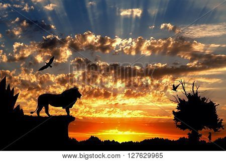 Jungle With Mountains, Old Tree, Birds Lion And Meerkat On Golden Cloudy Sunset Background