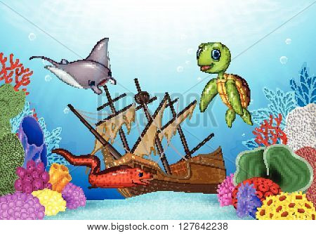 Vector illustration of Sea animals with Shipwreck on the ocean